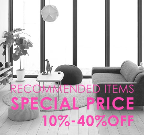 RECOMMENDED ITEMS SPECIAL PRICE
